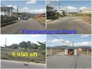 Arima, ,Land,For Sale,1120
