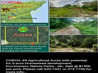 Couva, ,Land,For Sale,1133