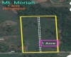 Chaguanas, ,Land,For Sale,1158